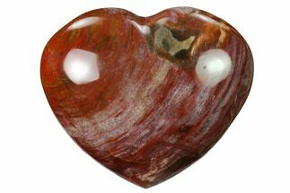 "Buy 3.6"" Polished Triassic Petrified Wood Heart - Madagascar - #139984"