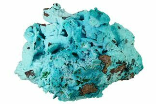 "4.2"" Chrysocolla and Malachite Pseudomorph - Lupoto Mine, Congo For Sale, #167681"