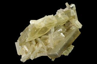 "Buy 2.1"" Tabular Barite Crystal Cluster with Phantoms - Peru - #169108"
