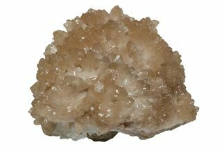 "1.8"" Lustrous Olmiite on Calcite - N'Chwaning Mine, South Africa For Sale, #169766"