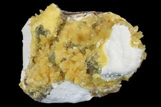 Calcite - Fossils For Sale - #170703