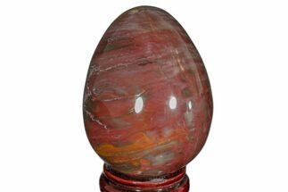 "Buy 3.8"" Colorful, Polished Petrified Wood Egg - Madagascar - #172516"