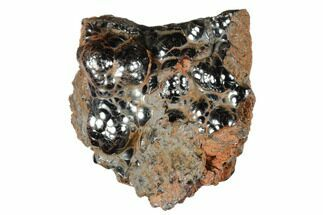 Hematite - Fossils For Sale - #174570
