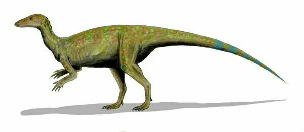 An artists reconstruction of Thescelosaurus. Creative Commons License
