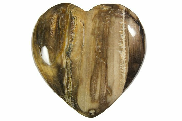 "1.6"" Polished Petrified Wood Hearts - Photo 1"