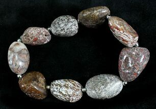 Colorado Agatized Dinosaur Bone Bracelet For Sale, #24688