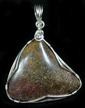 Silver Wire Wrapped Dinosaur Bone Pendant - Colorado For Sale, #26990