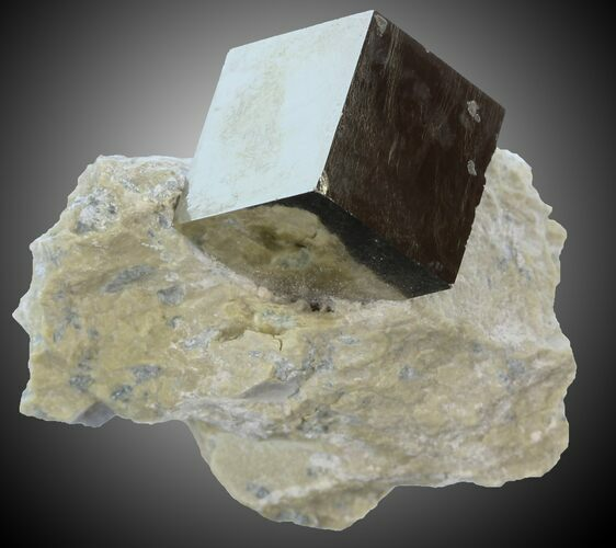 ".6"" Pyrite Cube on Matrix - Navajun, Spain"