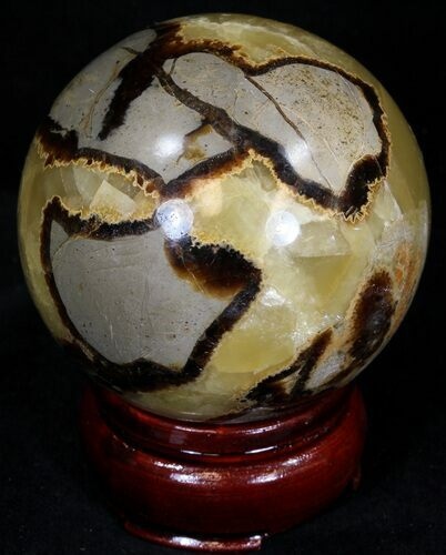 "2.37"" Polished Septarian Sphere"