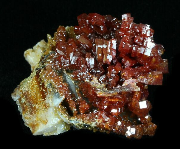 "1.75"" Shiny Red Vanadinite Crystals - Morocco"