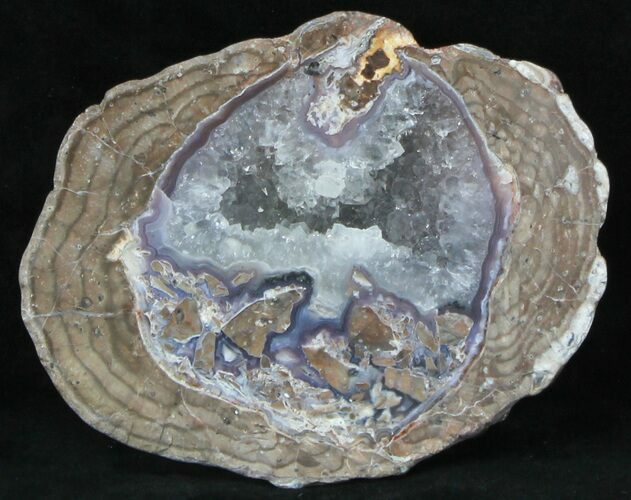 "5"" Crystal Filled Dugway Geode (Polished Half)"