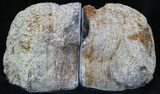 "4.3"" Dugway Geode Bookends - Sparking Crystals - #33197-3"