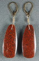 Large, Red Agatized Dinosaur Gembone Earrings  For Sale, #33826