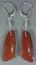 Rich, Red Agatized Dinosaur Gembone Earrings For Sale, #33828