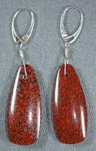Rich, Red Agatized Dinosaur Gembone Earrings For Sale, #33830