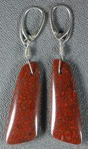 Rich, Red Agatized Dinosaur Gembone Earrings For Sale, #33831