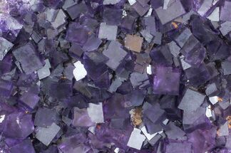 Fluorite - Fossils For Sale - #35709