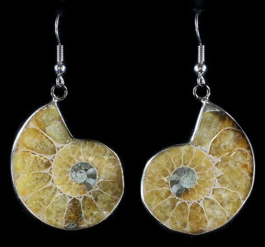 Fossil Ammonite Earrings - 110 Million Years Old