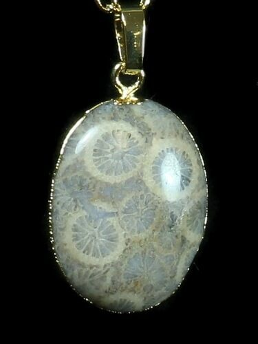 20 Million Year Old Fossil Coral Necklace