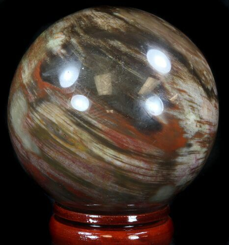 "3.6"" Colorful Petrified Wood Sphere"
