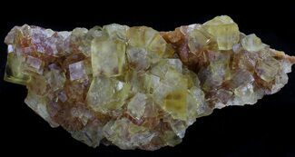 "5.7"" Lustrous, Yellow Cubic Fluorite Crystals - Morocco  For Sale, #37484"