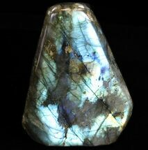 "Buy 3.6"" Flashy Polished Labradorite - Free-Standing - #37588"