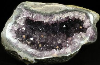 "7.5"" Amethyst Crystal Geode For Sale, #37739"