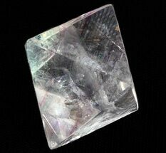 Fluorite with Chalcopyrite - Fossils For Sale - #37839