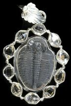 Sterling Silver Elrathia Trilobite Pendant For Sale, #37958