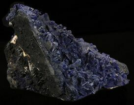 Azurite - Fossils For Sale - #38550