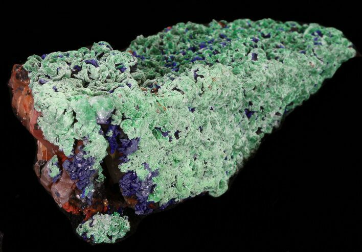 "3.9"" Malachite with Azurite - Morocco"