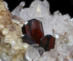 "2.7"" Brookite Crystals with Quartz on Matrix - Pakistan For Sale, #38654"
