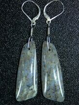 Blue/Green Spiderweb Dinosaur Gembone Earrings For Sale, #22531