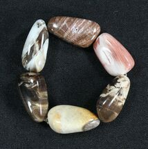 Polished Oregon Petrified Wood Bracelet For Sale, #40805