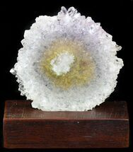 "Buy 3.5"" Amethyst Stalactite Slice With Wood Base - #40942"