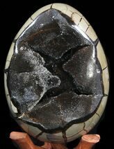 "Buy 8.2"" Septarian ""Dragon Egg"" Geode - Crystal Filled - #40939"