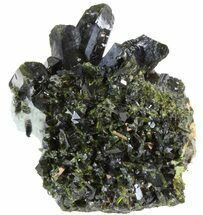 "Lustrous 2.0"" Epidote Crystal Cluster on Actinolite- Pakistan For Sale, #41579"