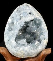 Celestite - Fossils For Sale - #41712