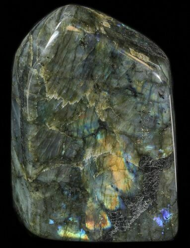 "7.2"" Flashy Polished Free Form Labradorite - 7 lbs"