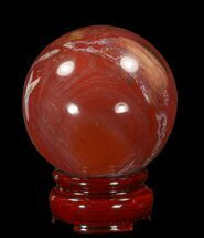 "2.4"" Colorful Petrified Wood Sphere For Sale, #41939"