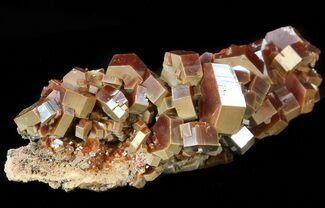 "Buy 3.5"" Huge Red & Brown Vanadinite Crystals on Matrix - Morocco - #42208"