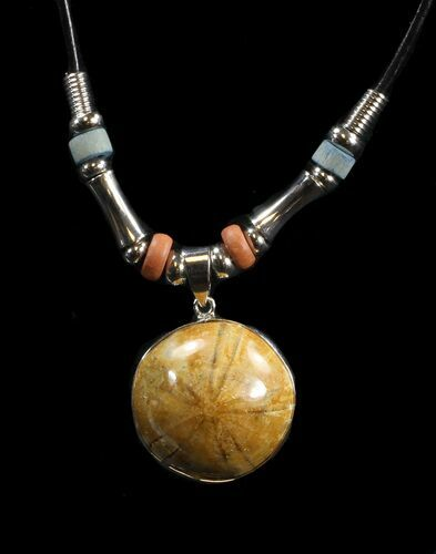 Polished Fossil Sand Dollar Necklace