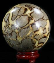 "Buy 6.15"" Polished Septarian Sphere - 13 lbs - #43789"