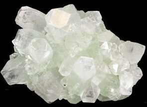 "Buy 3.1"" Zoned Apophyllite Crystal Cluster - India - #44335"