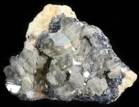 "1.4"" Cerussite Crystals on Galena - Morocco For Sale, #44771"