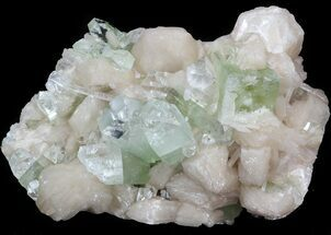 Apophyllite & Stilbite - Fossils For Sale - #44448