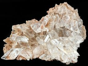 Gypsum var. Selenite - Fossils For Sale - #45201