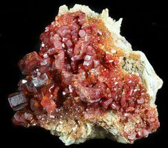 "2.6"" Lustrous Red Vanadinite Crystals on Barite - Morocco For Sale, #45692"