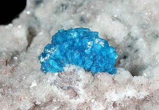 Cavansite on Stilbite - Fossils For Sale - #45873