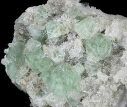 "3.69""  Sea Green  Fluorite on Bed Of Quartz - China For Sale, #32489"